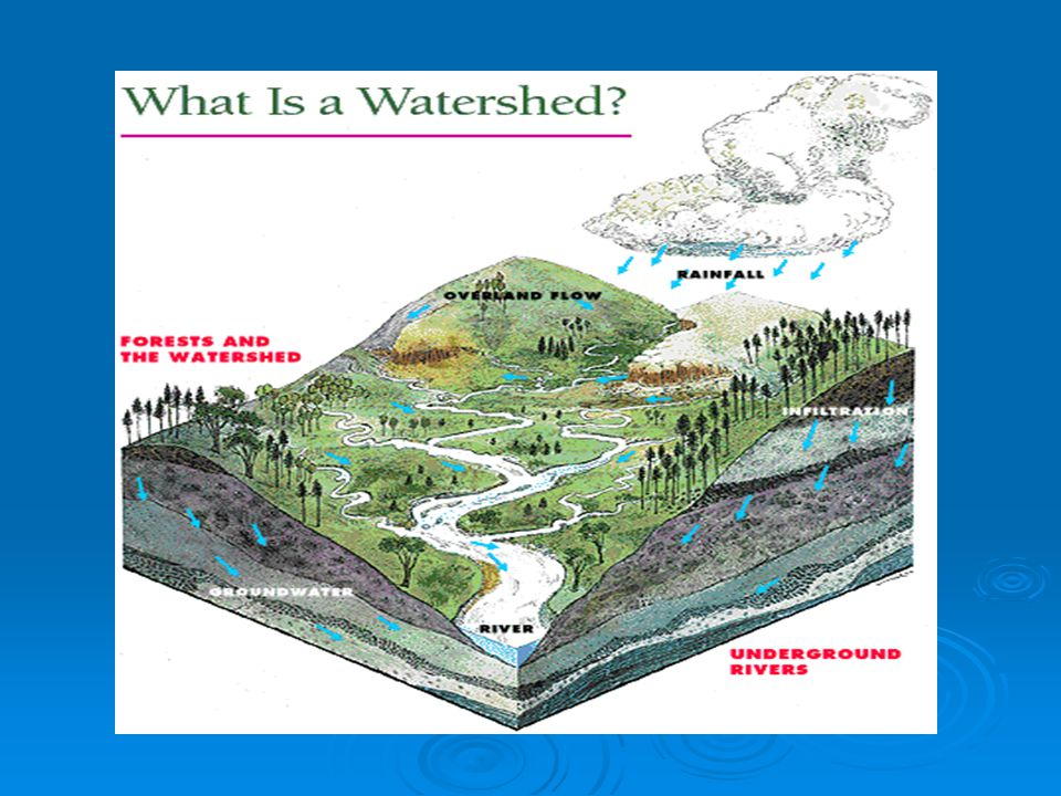 When thinking of a watershed do not just think of water, include land, landuse, topography, geology etc.