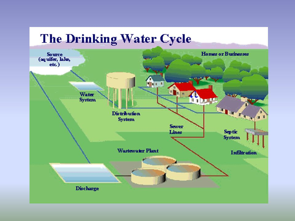 Drinking Water Cycle