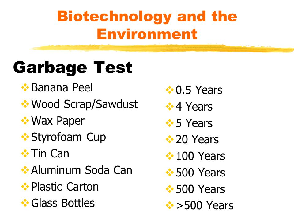 Garbage Test  Banana Peel  Wood Scrap/Sawdust  Wax Paper  Styrofoam Cup  Tin Can  Aluminum Soda Can  Plastic Carton  Glass Bottles  0.5 Years