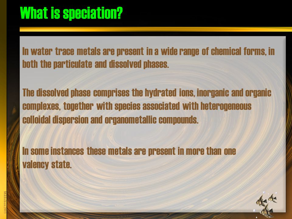 What is speciation.