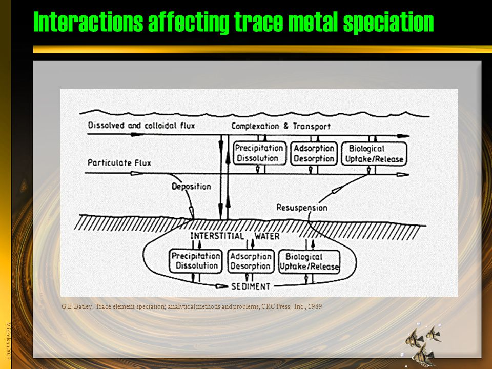 Mikkelsen 2003 G.E Batley, Trace element speciation; analytical methods and problems, CRC Press, Inc., 1989 Interactions affecting trace metal speciation
