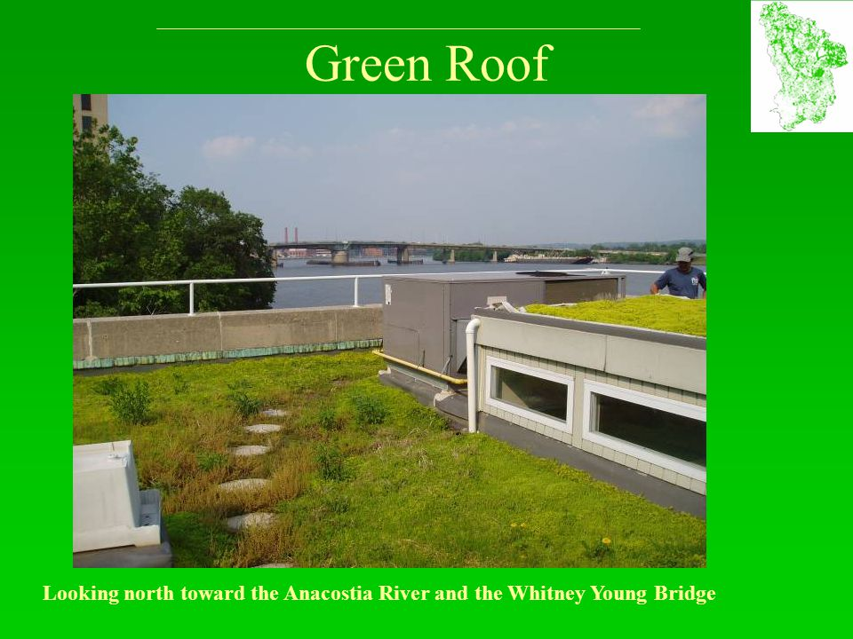 Green Roof Looking north toward the Anacostia River and the Whitney Young Bridge