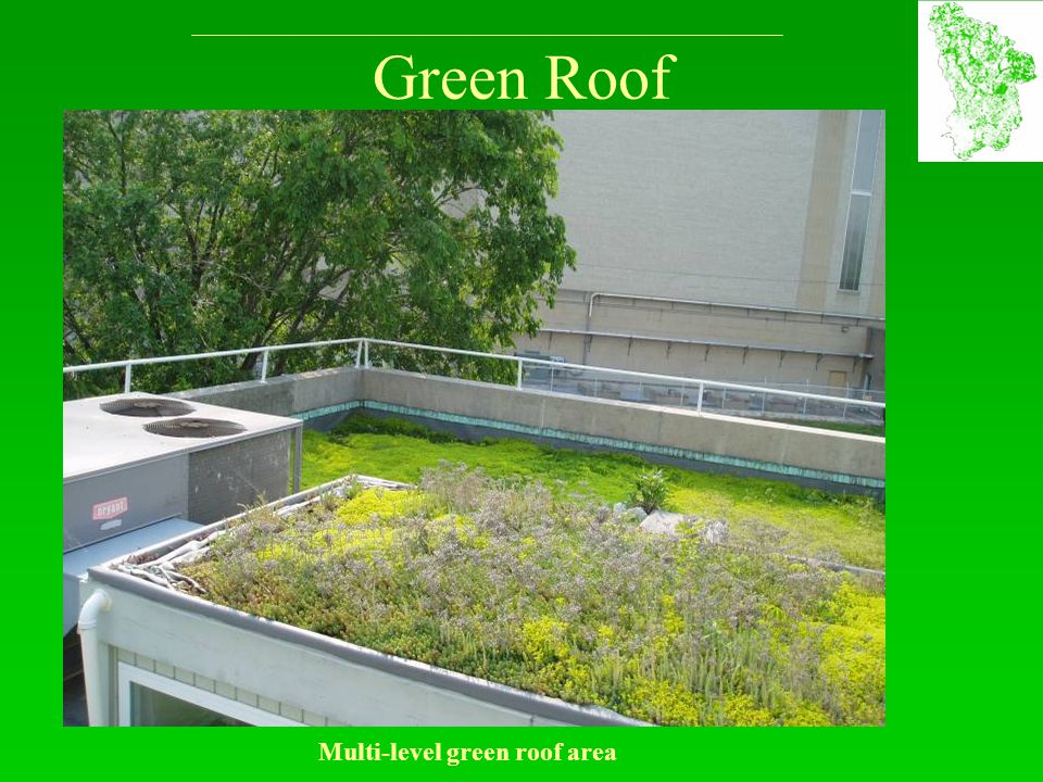 Green Roof Multi-level green roof area