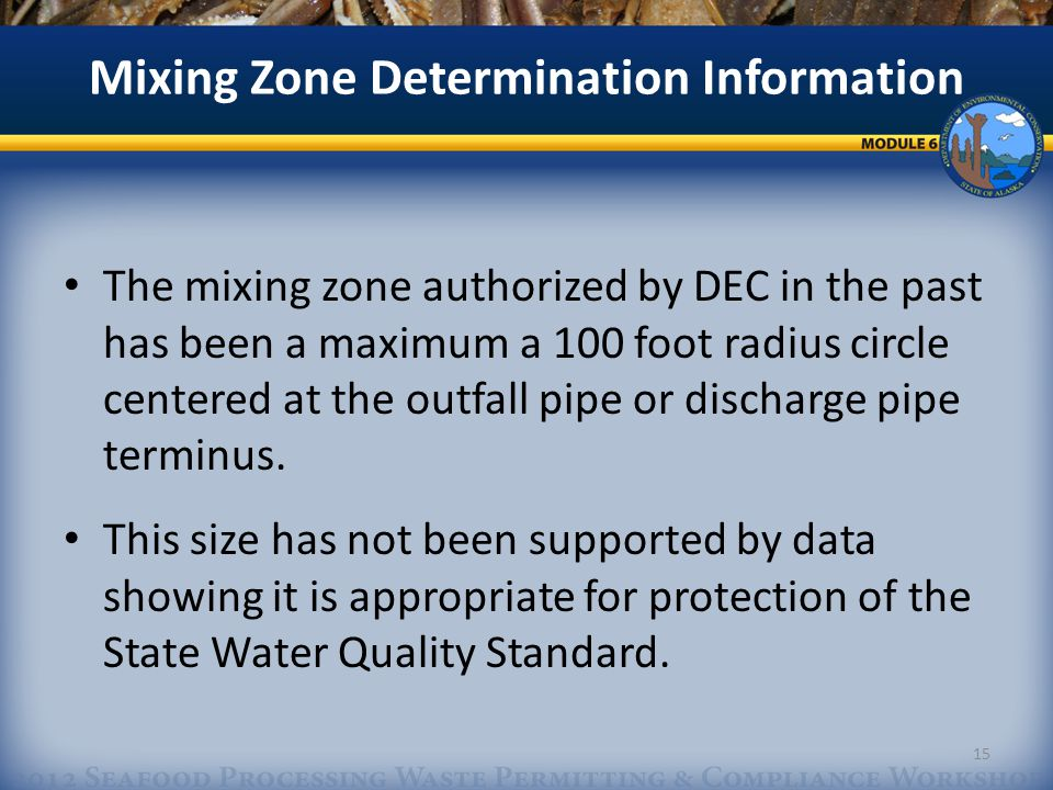 The mixing zone authorized by DEC in the past has been a maximum a 100 foot radius circle centered at the outfall pipe or discharge pipe terminus.