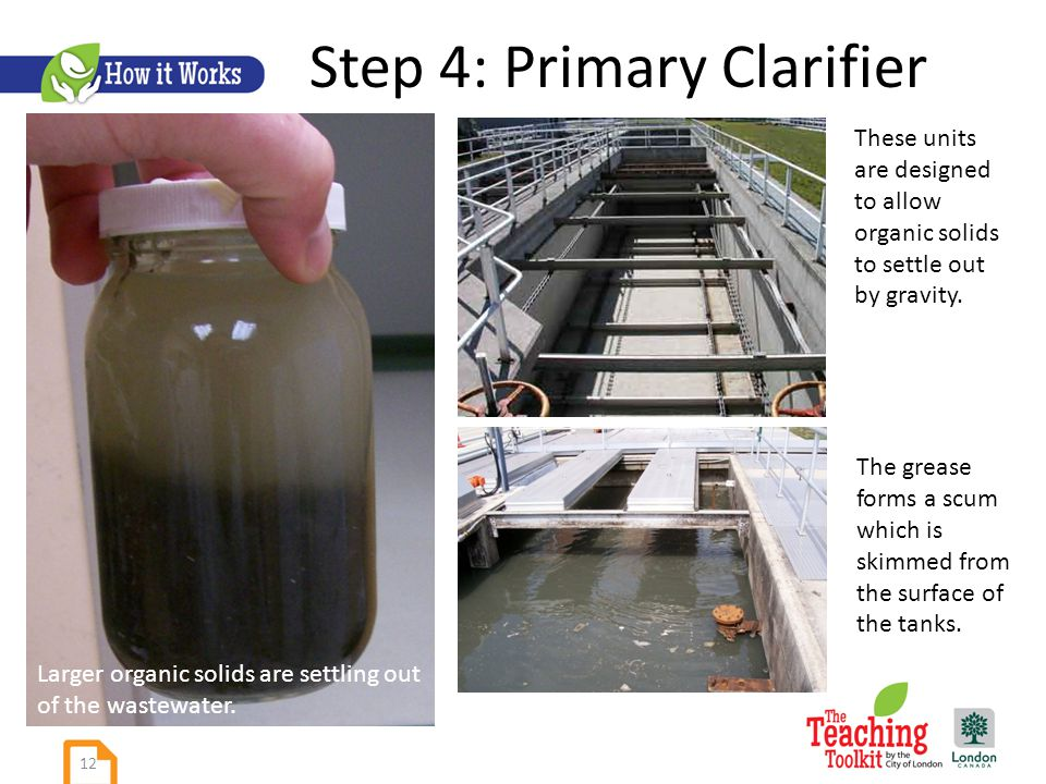 Step 4: Primary Clarifier Larger organic solids are settling out of the wastewater.