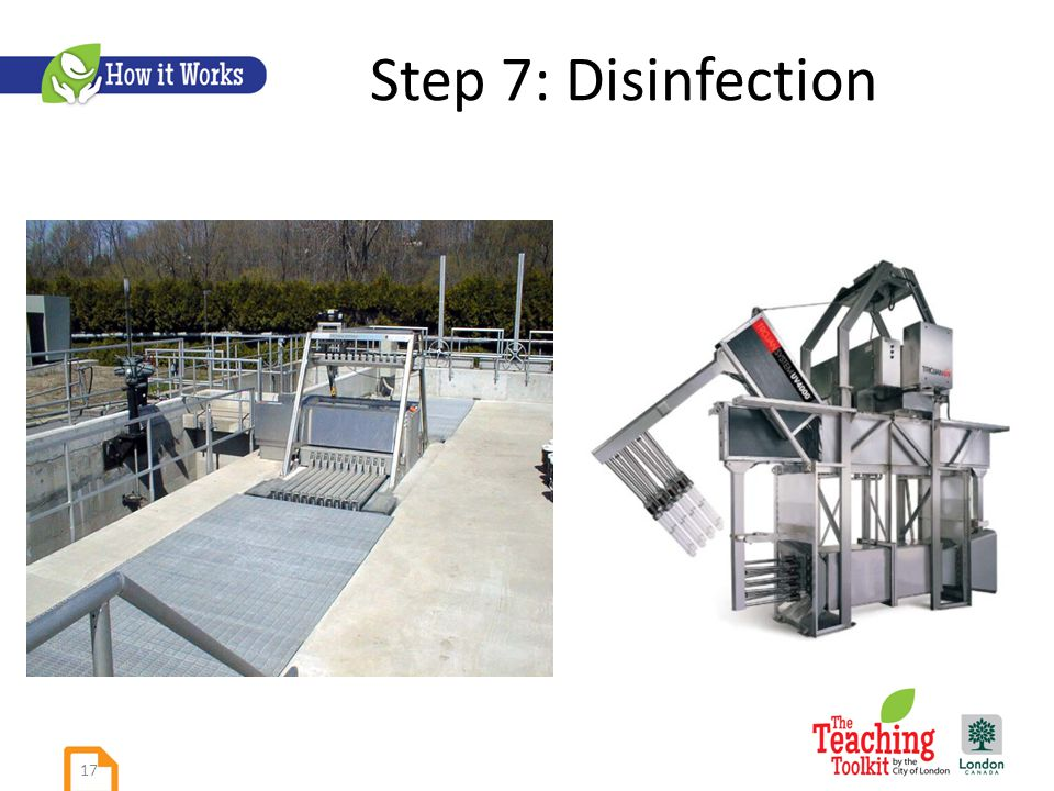 Step 7: Disinfection 17