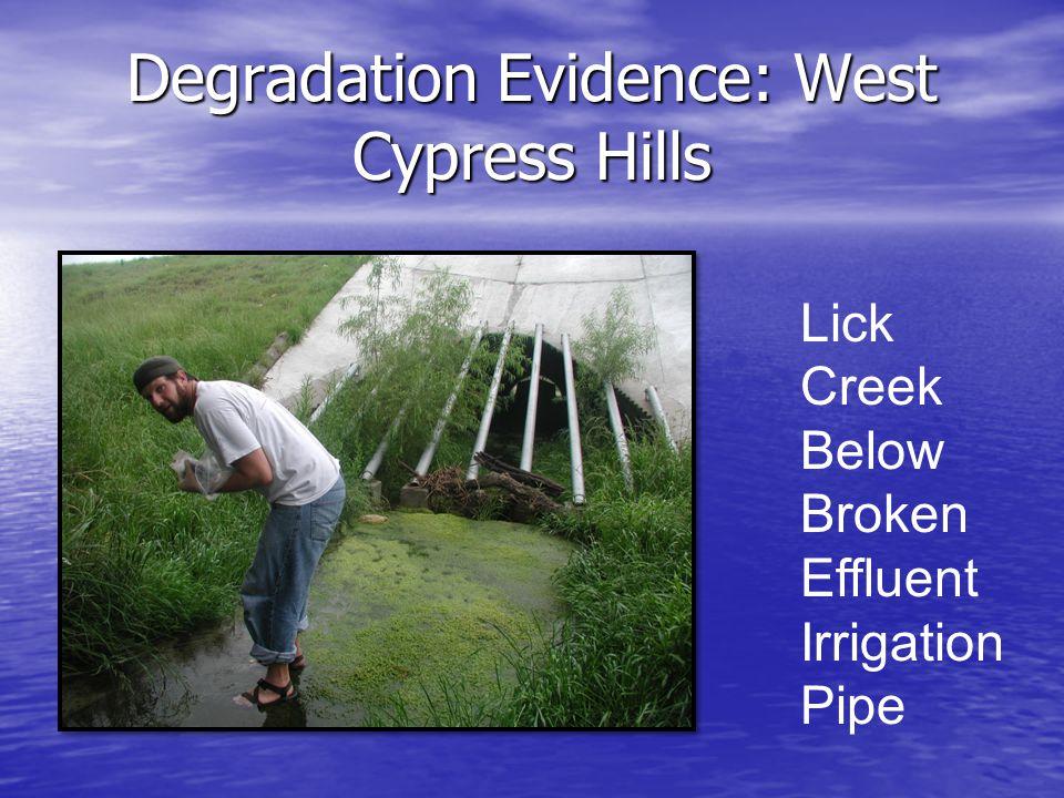 Degradation Evidence: West Cypress Hills Lick Creek Below Broken Effluent Irrigation Pipe