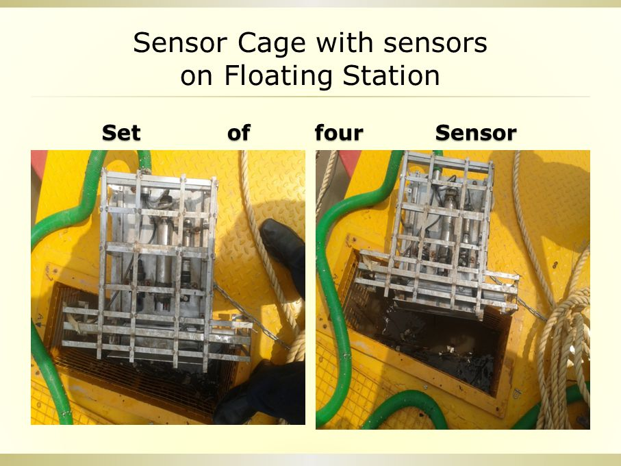 Sensor Cage with sensors on Floating Station Set of four Sensor Set of four Sensor