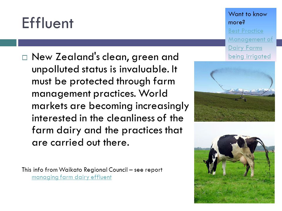 Effluent  New Zealand's clean, green and unpolluted status is invaluable. It must be protected through farm management practices. World markets are b