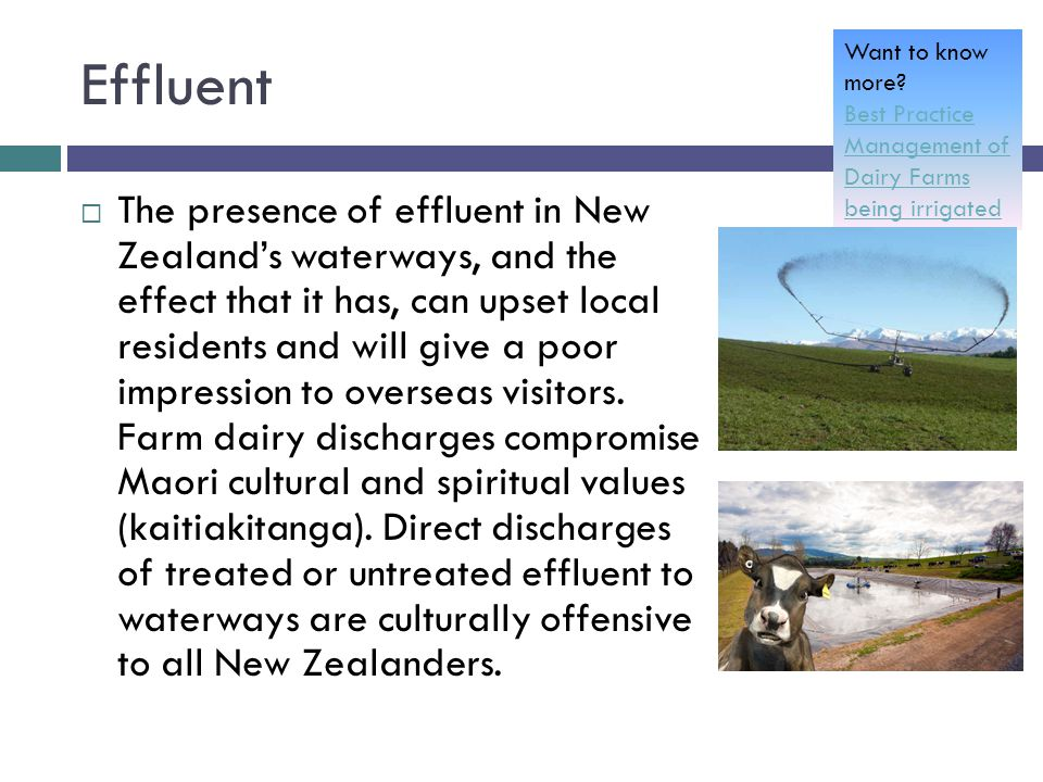 Effluent  The presence of effluent in New Zealand's waterways, and the effect that it has, can upset local residents and will give a poor impression