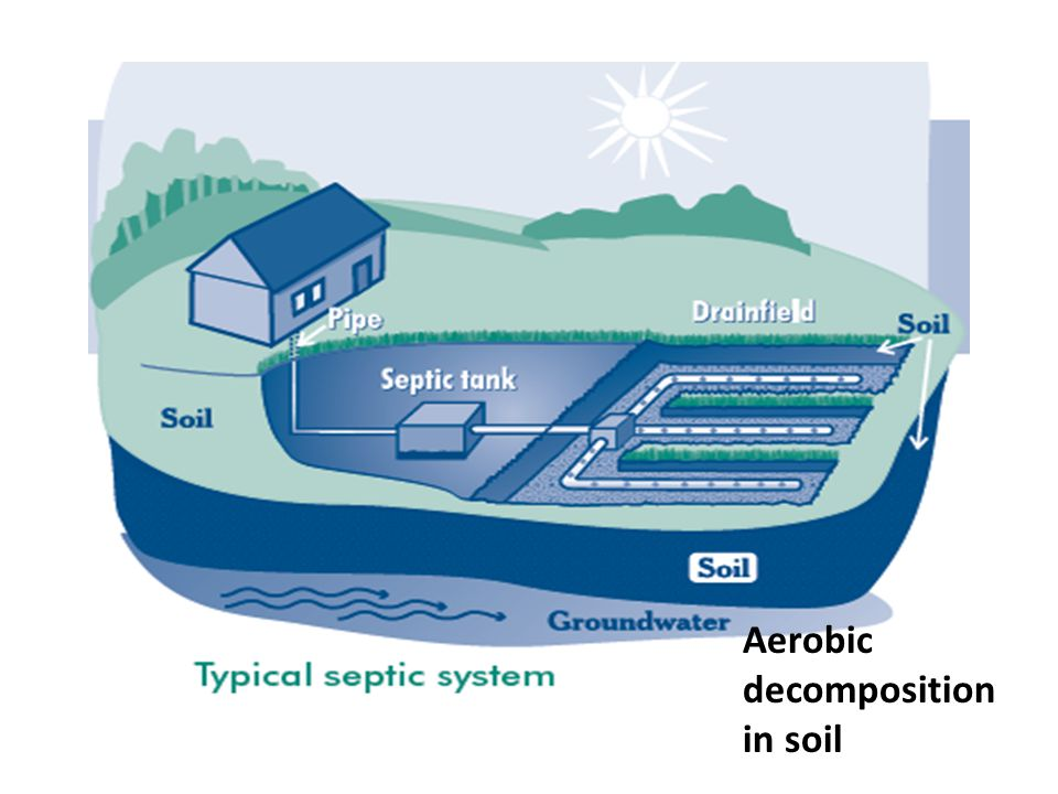 Aerobic decomposition in soil