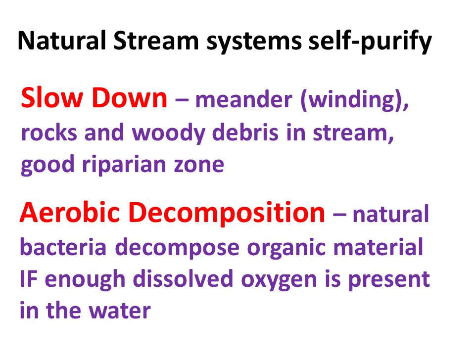 Natural Stream systems self-purify Slow Down – meander (winding), rocks and woody debris in stream, good riparian zone Aerobic Decomposition – natural bacteria decompose organic material IF enough dissolved oxygen is present in the water