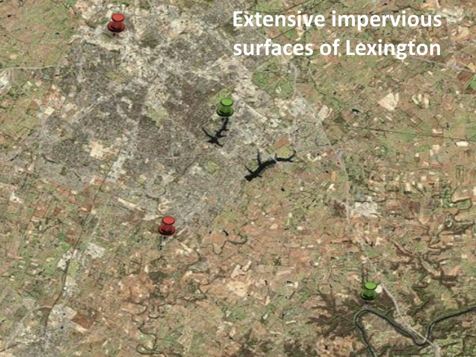 Extensive impervious surfaces of Lexington