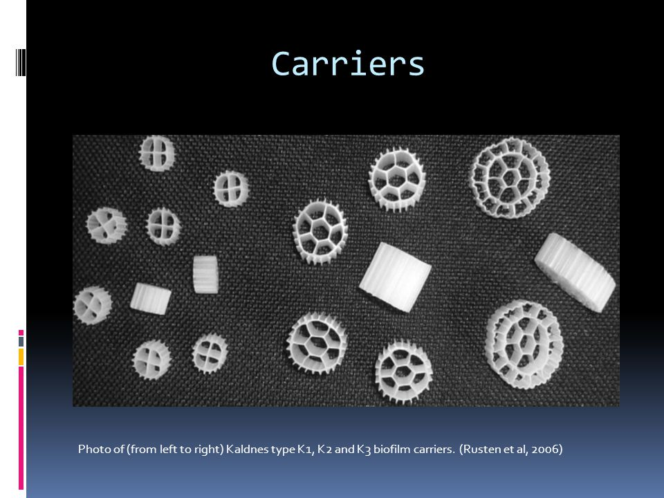 Carriers Photo of (from left to right) Kaldnes type K1, K2 and K3 biofilm carriers. (Rusten et al, 2006)