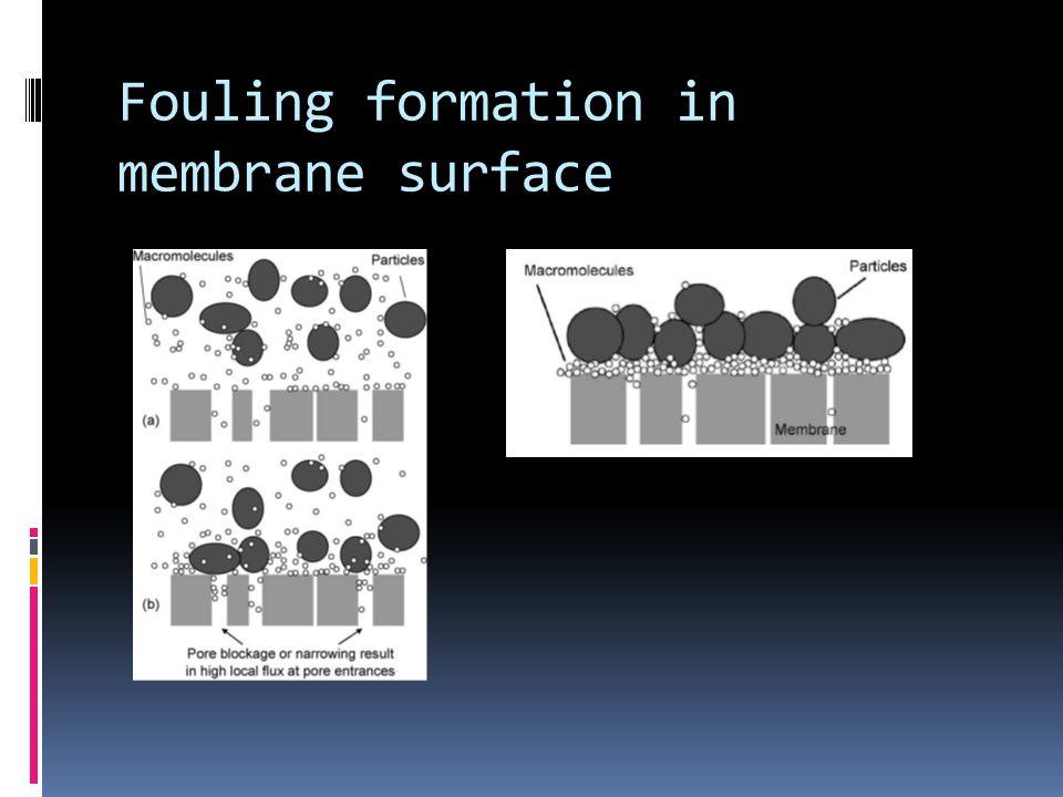 Commercial Membrane Electron micrographs of non-woven polypropylene (NWPP) and polysulphone (PS) membranes: (a) PS (0.3 mm); (b) NWPP (5 mm); (c) NWPP (3 mm); (d) NWPP (1.5 mm).