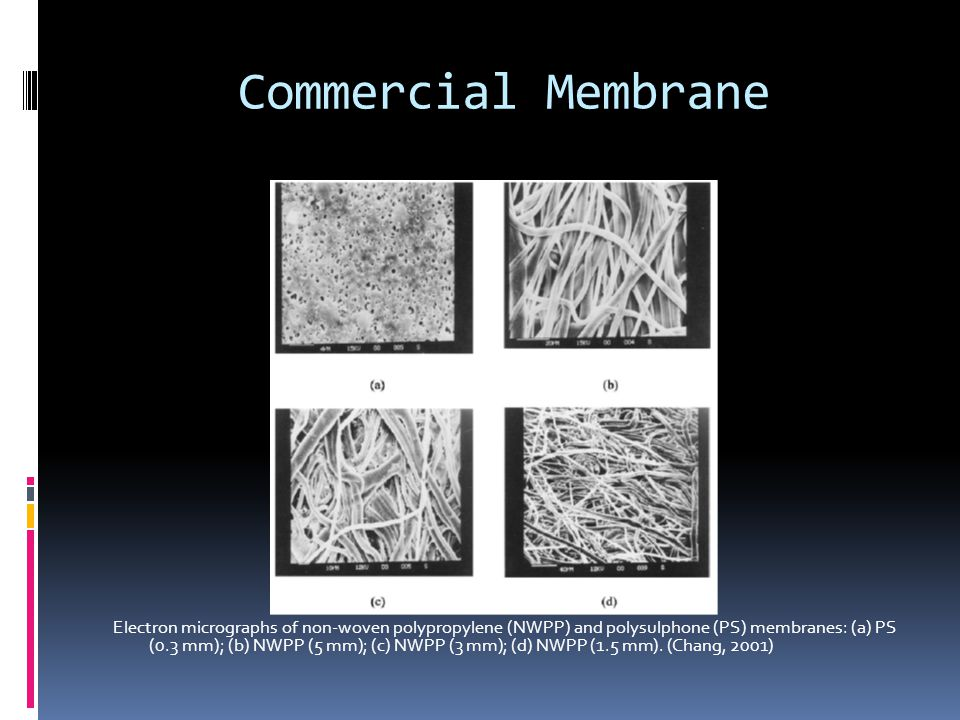 Commercial Membrane Electron micrographs of non-woven polypropylene (NWPP) and polysulphone (PS) membranes: (a) PS (0.3 mm); (b) NWPP (5 mm); (c) NWPP