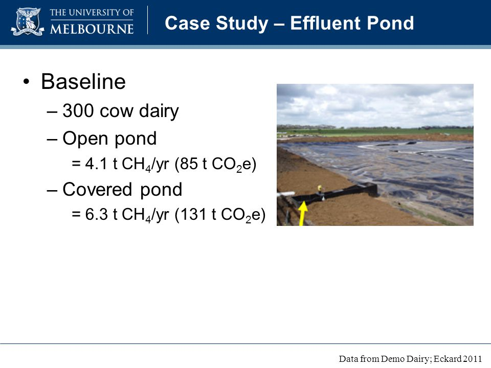 Case Study – Effluent Pond Baseline –300 cow dairy –Open pond = 4.1 t CH 4 /yr (85 t CO 2 e) –Covered pond = 6.3 t CH 4 /yr (131 t CO 2 e) Data from Demo Dairy; Eckard 2011