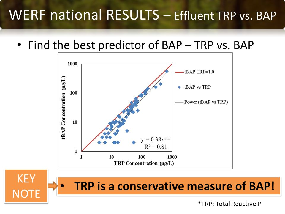 Find the best predictor of BAP – TRP vs. BAP RESULTS WERF national RESULTS – Effluent TRP vs.