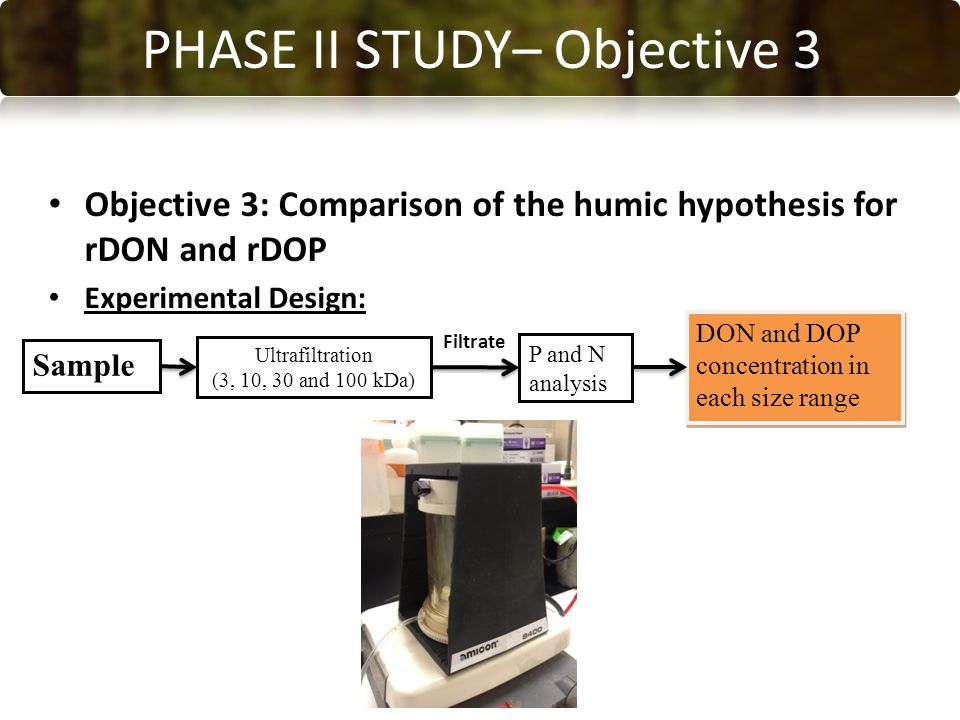 CONCLUSIONS PHASE II STUDY– Objective 3 Objective 3: Comparison of the humic hypothesis for rDON and rDOP Experimental Design: Sample Ultrafiltration (3, 10, 30 and 100 kDa) P and N analysis DON and DOP concentration in each size range Filtrate