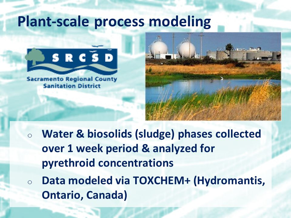 o Water & biosolids (sludge) phases collected over 1 week period & analyzed for pyrethroid concentrations o Data modeled via TOXCHEM+ (Hydromantis, Ontario, Canada) Plant-scale process modeling