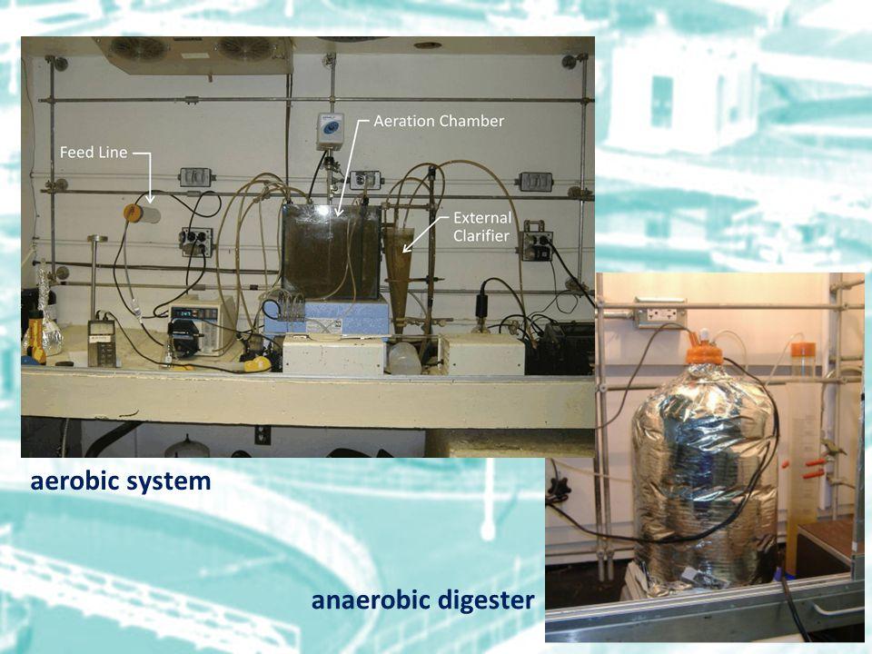 anaerobic digester aerobic system