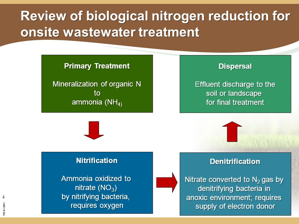 PD-Sw205w 4 Review of biological nitrogen reduction for onsite wastewater treatment Primary Treatment Mineralization of organic N to ammonia (NH 4) Nitrification Ammonia oxidized to nitrate (NO 3 ) by nitrifying bacteria, requires oxygen Denitrification Nitrate converted to N 2 gas by denitrifying bacteria in anoxic environment; requires supply of electron donor Dispersal Effluent discharge to the soil or landscape for final treatment