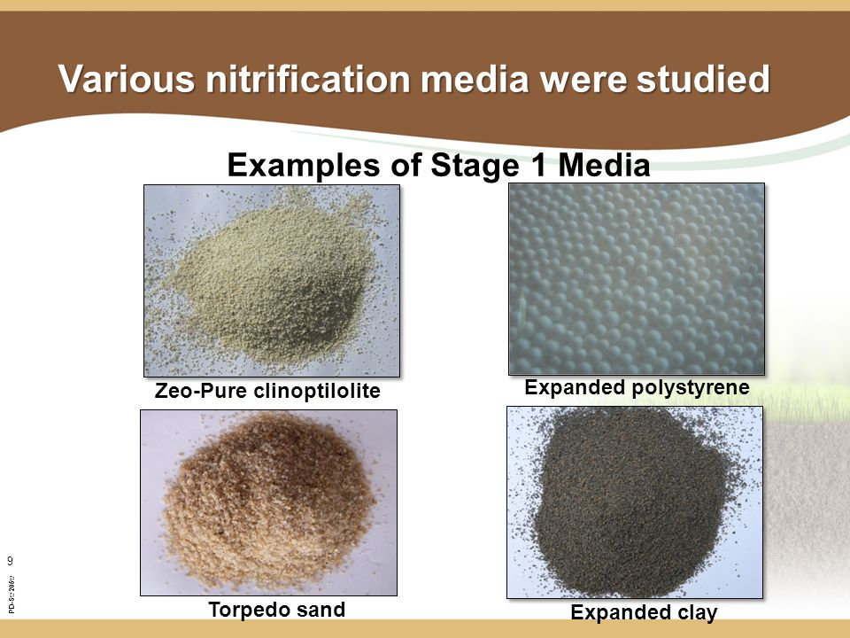 PD-Sw205w 9 Various nitrification media were studied Zeo-Pure clinoptilolite Expanded polystyrene Examples of Stage 1 Media Expanded clay Torpedo sand