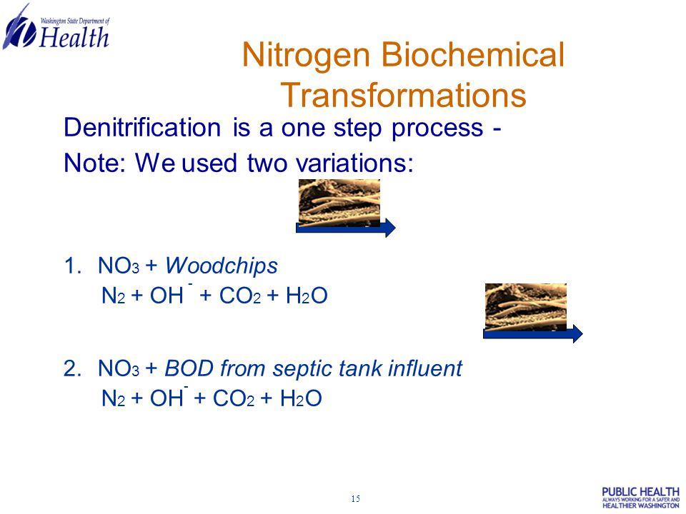 15 Denitrification is a one step process - Note: We used two variations: 1.NO 3 + Woodchips N 2 + OH - + CO 2 + H 2 O 2.NO 3 + BOD from septic tank influent N 2 + OH - + CO 2 + H 2 O Nitrogen Biochemical Transformations