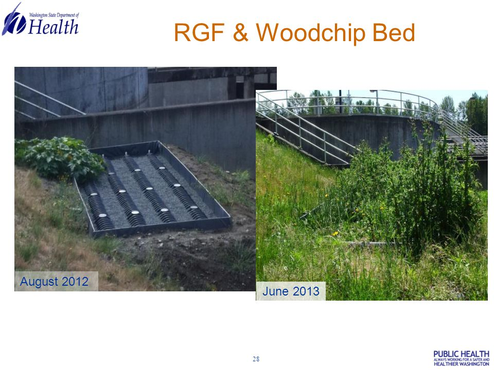28 RGF & Woodchip Bed August 2012 June 2013
