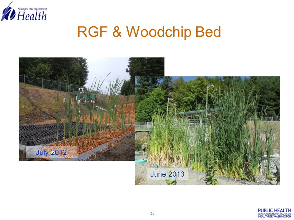 29 RGF & Woodchip Bed July 2012 June 2013
