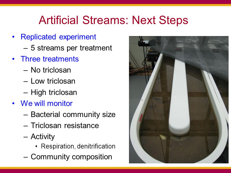 Artificial Streams: Next Steps Replicated experiment –5 streams per treatment Three treatments –No triclosan –Low triclosan –High triclosan We will monitor –Bacterial community size –Triclosan resistance –Activity Respiration, denitrification –Community composition