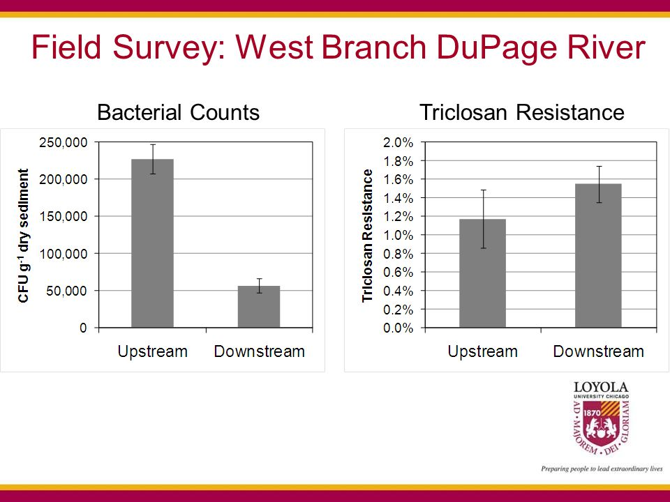 Field Survey: West Branch DuPage River Bacterial CountsTriclosan Resistance
