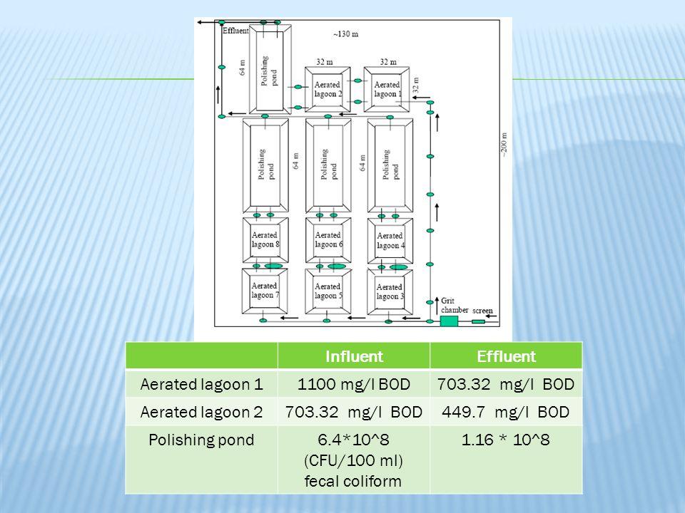 InfluentEffluent Aerated lagoon 11100 mg/l BOD703.32 mg/l BOD Aerated lagoon 2703.32 mg/l BOD449.7 mg/l BOD Polishing pond6.4*10^8 (CFU/100 ml) fecal