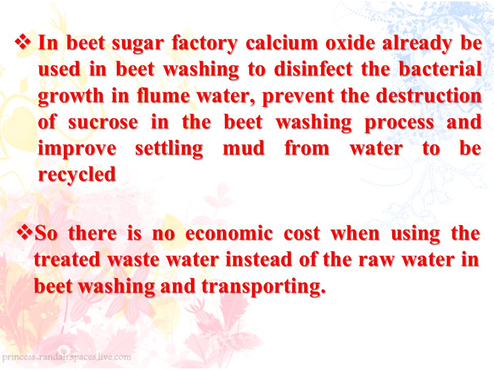  In beet sugar factory calcium oxide already be used in beet washing to disinfect the bacterial growth in flume water, prevent the destruction of sucrose in the beet washing process and improve settling mud from water to be recycled  So there is no economic cost when using the treated waste water instead of the raw water in beet washing and transporting.