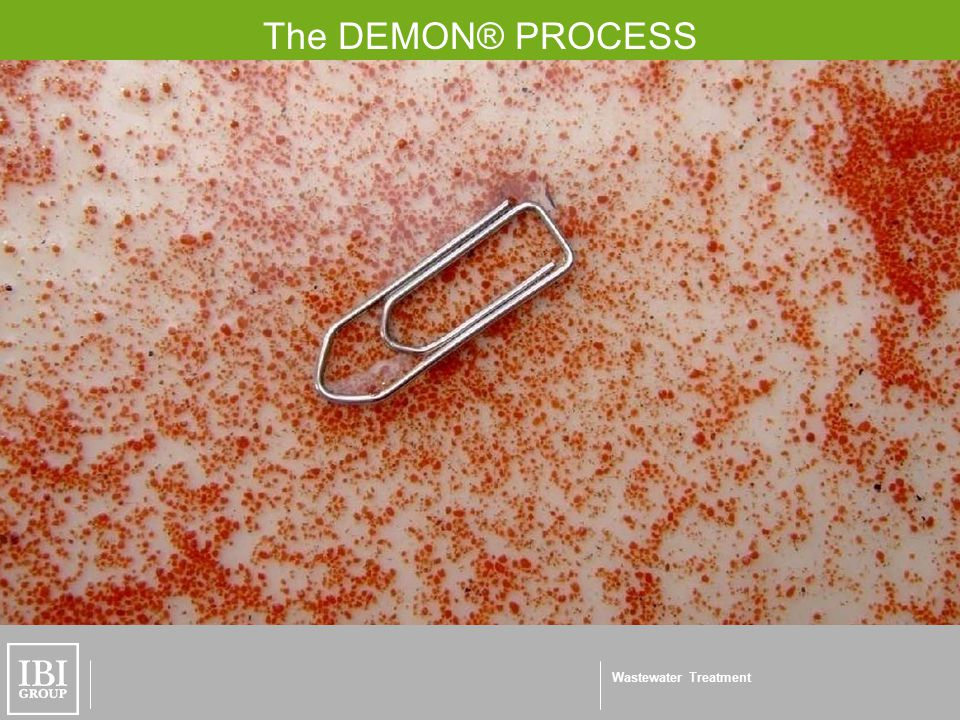 Wastewater Treatment The DEMON® PROCESS