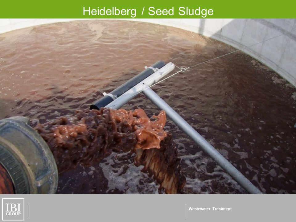 Wastewater Treatment Heidelberg / Seed Sludge