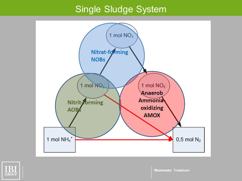 Wastewater Treatment Single Sludge System