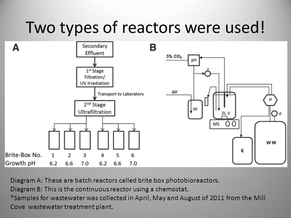 Two types of reactors were used.