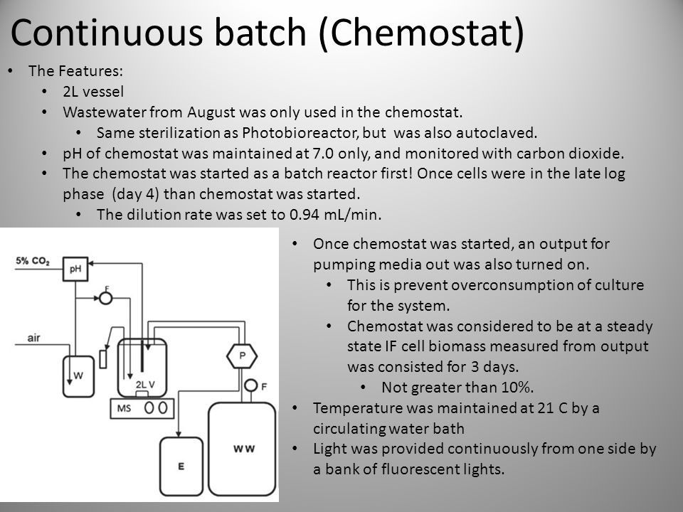 Continuous batch (Chemostat) The Features: 2L vessel Wastewater from August was only used in the chemostat.