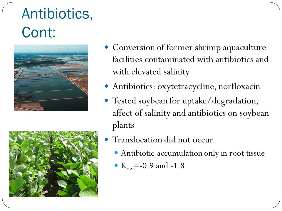 Antibiotics, Cont: Conversion of former shrimp aquaculture facilities contaminated with antibiotics and with elevated salinity Antibiotics: oxytetracycline, norfloxacin Tested soybean for uptake/degradation, affect of salinity and antibiotics on soybean plants Translocation did not occur Antibiotic accumulation only in root tissue K ow =-0.9 and -1.8