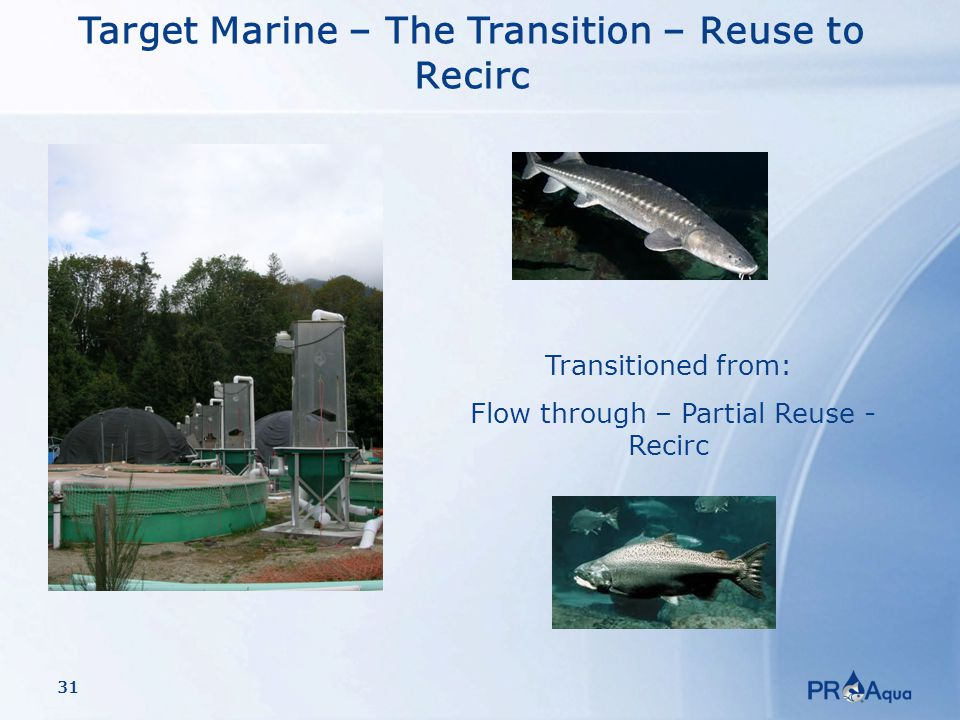 31 Target Marine – The Transition – Reuse to Recirc Transitioned from: Flow through – Partial Reuse - Recirc