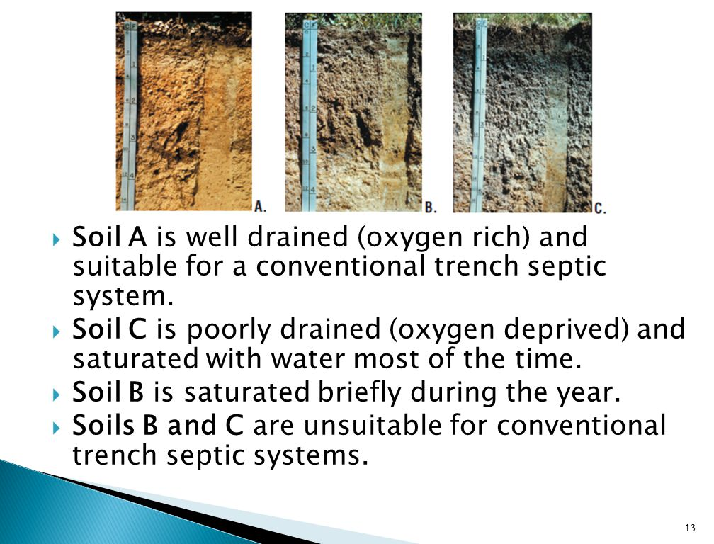  Soil texture and structure affects the speed that water moves through soil  Problems for absorption fields: ◦ High water tables ◦ Dense or impermeable subsoil (transmit water too slow) ◦ Sandy soils (transmit water too fast)  Prime Ag land (land that is good for crop production) usually does not make a good septic absorption field.
