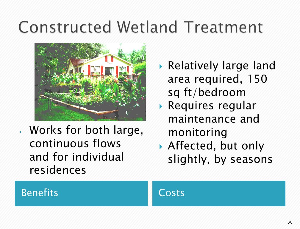 29 Home Septic Tank Cleanouts Constructed Wetland Level Adjust Sump Disposal Field