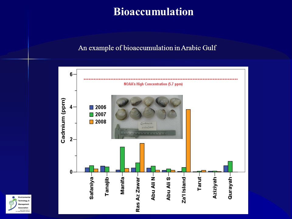 An example of bioaccumulation in Arabic Gulf Bioaccumulation