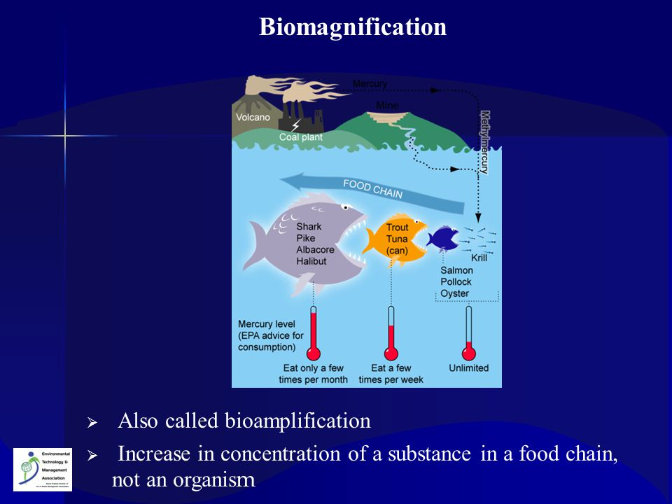  Also called bioamplification  Increase in concentration of a substance in a food chain, not an organis m Biomagnification