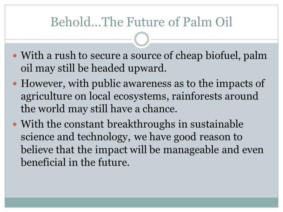 Behold…The Future of Palm Oil With a rush to secure a source of cheap biofuel, palm oil may still be headed upward.