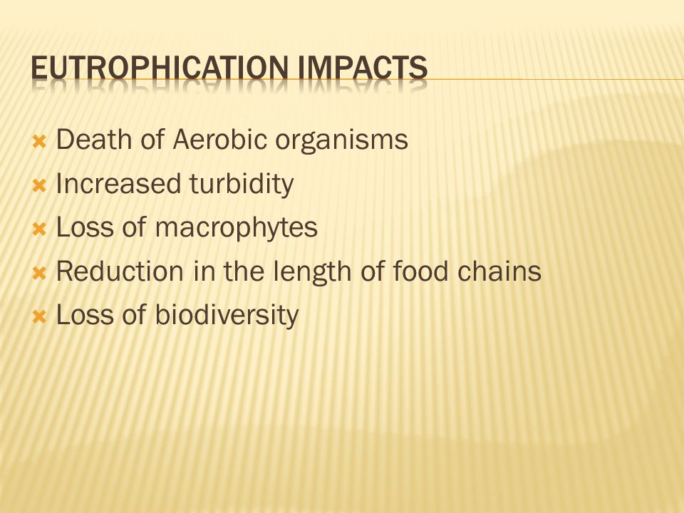  Death of Aerobic organisms  Increased turbidity  Loss of macrophytes  Reduction in the length of food chains  Loss of biodiversity