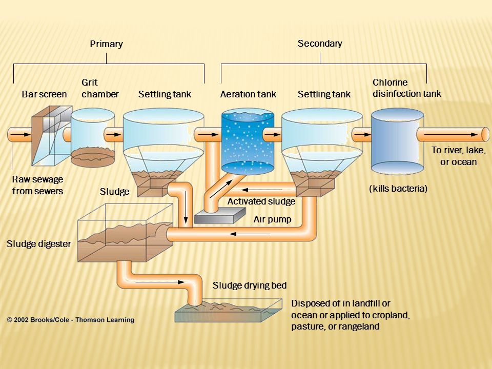 Raw sewage from sewers Bar screen Grit chamber Settling tankAeration tankSettling tank Chlorine disinfection tank Sludge Sludge digester Activated sludge Air pump (kills bacteria) To river, lake, or ocean Sludge drying bed Disposed of in landfill or ocean or applied to cropland, pasture, or rangeland Primary Secondary