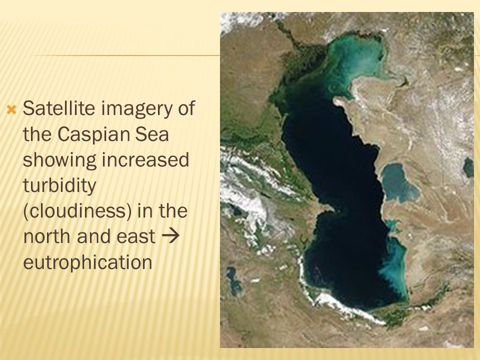  Satellite imagery of the Caspian Sea showing increased turbidity (cloudiness) in the north and east  eutrophication