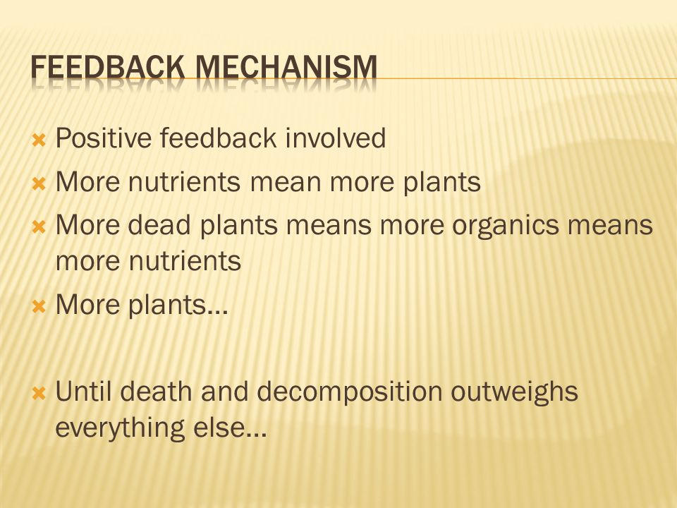  Positive feedback involved  More nutrients mean more plants  More dead plants means more organics means more nutrients  More plants…  Until death and decomposition outweighs everything else…